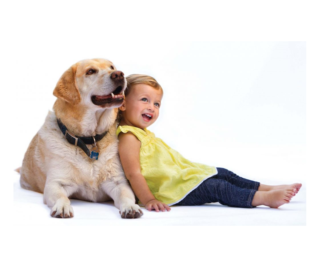 15 Reasons Why You Should Get Your Kid A Dog